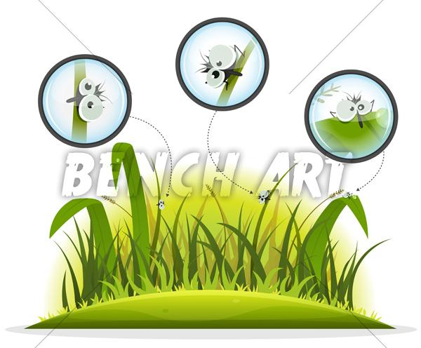 Insects Inside Grass